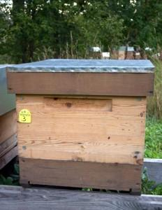 Bišu veselības programmas piešķirtais numurs uz Priežukalna stropa